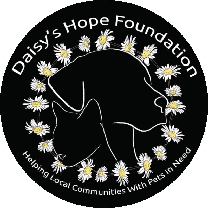 Daisy's Hope Foundation logo